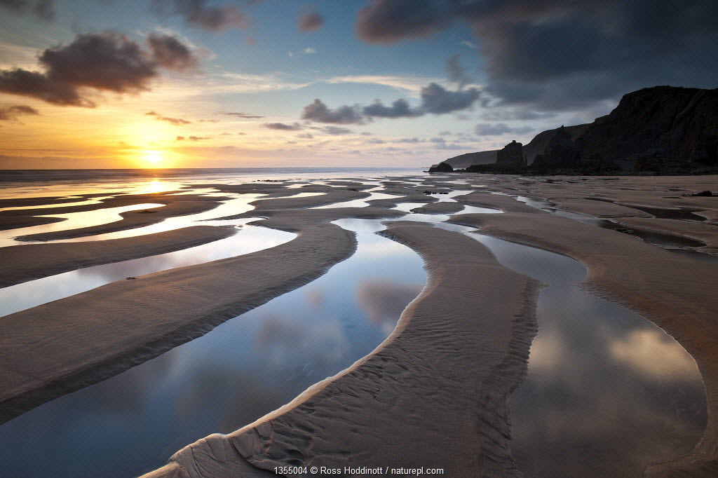 Sandymouth Bay in evening light. North Cornwall, UK
