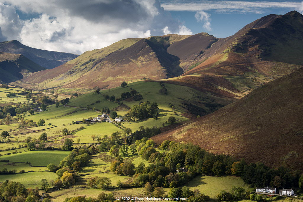 Newlands Valley and Causey Pike, Lake District National Park, Cumbria