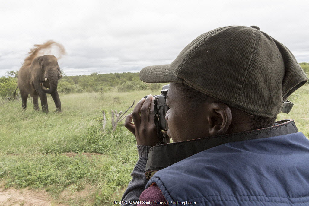 Student taking pictures of African elephant (Loxodonta africana) dustbathing during Wild Shots Outreach Course. Timbavati Game Reserve, Limpopo Province, South Africa