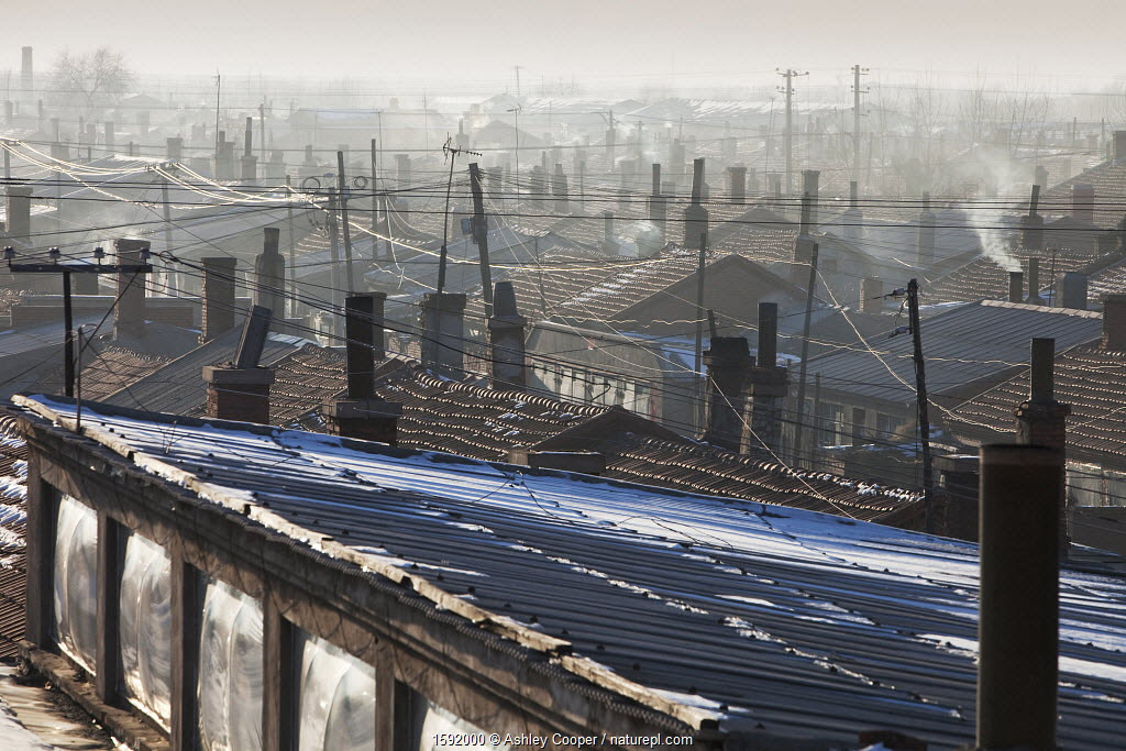 Dwellings in Suihua with smoke coming out from the chimneys, Heilongjiang Province, China.