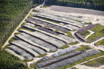 Boreal forest trees clear felled to make way for a new tar sands mine north of Fort McMurray, Alberta, Canada.
