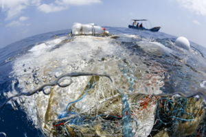 A tangle of fishing nets, lines, hooks and other garbage found floating in the Indian Ocean. There was a small community of fish associated with this trash, but also fish that had been entangled and killed.