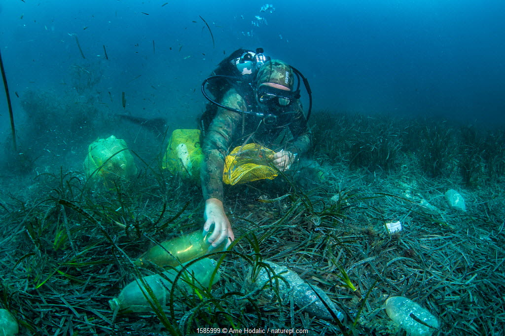 Scuba diver removing plastic marine litter from the sea bed. Mljet National Park, Mljet Island, Croatia. May 2015.
