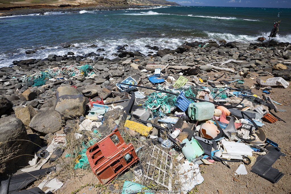 Plastic waste discarded at sea washed up by trade winds onto Molokai Island, Hawaii. July.