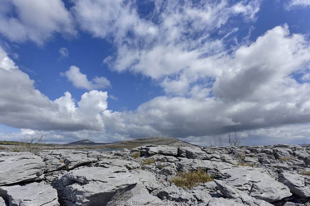 Landscape in Lough Gealain, Burren National Park, County Clare, Ireland. April 2016.