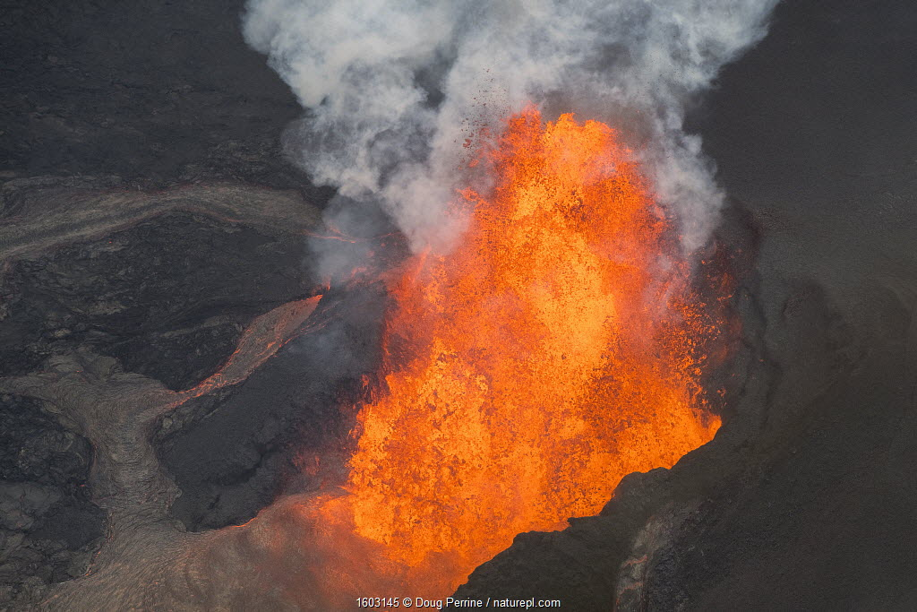 Lava originating from Kilauea Volcano, erupting from fissure 8, near Pahoa, fountaining over 70m high into the air and sending a river of lava toward, Kapoho, Puna District, Hawaii. June 2018.
