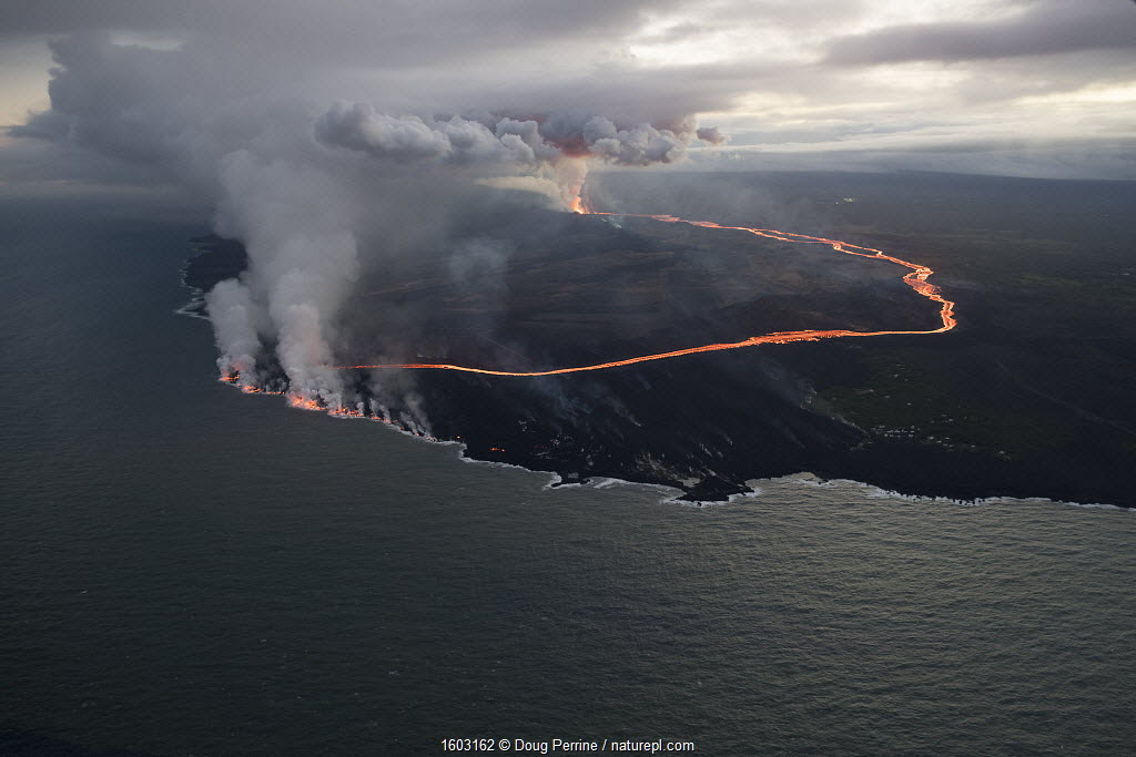Lava erupting from fissure 8, Kilauea Volcano, near Pahoa, and flowing through agricultural plots to enter the ocean just south of Cape Kumukahi, Kapoho, Puna District, Hawaii. June 2018.