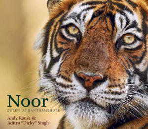 noor 39 is