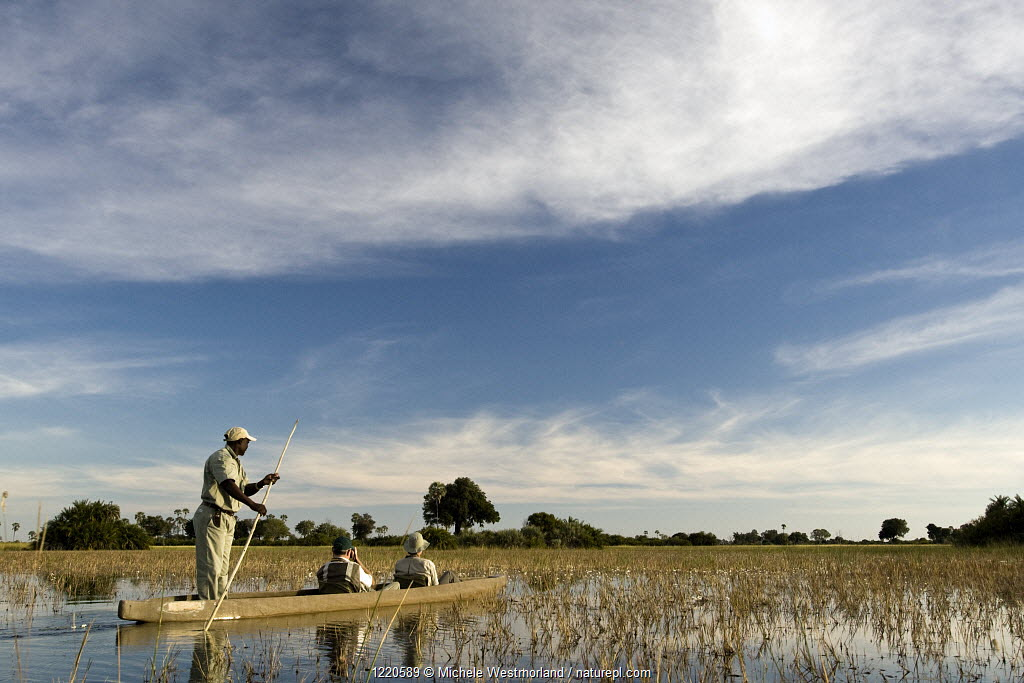 Tourists on Mokoro tour (traditional canoe) Jao Camp, Okavango Delta, Botswana, model released