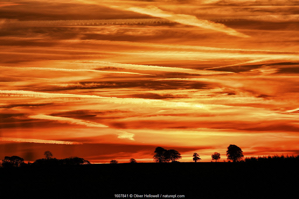 Sunset over the fields, Blackdown hills, Somerset, England, UK. October.