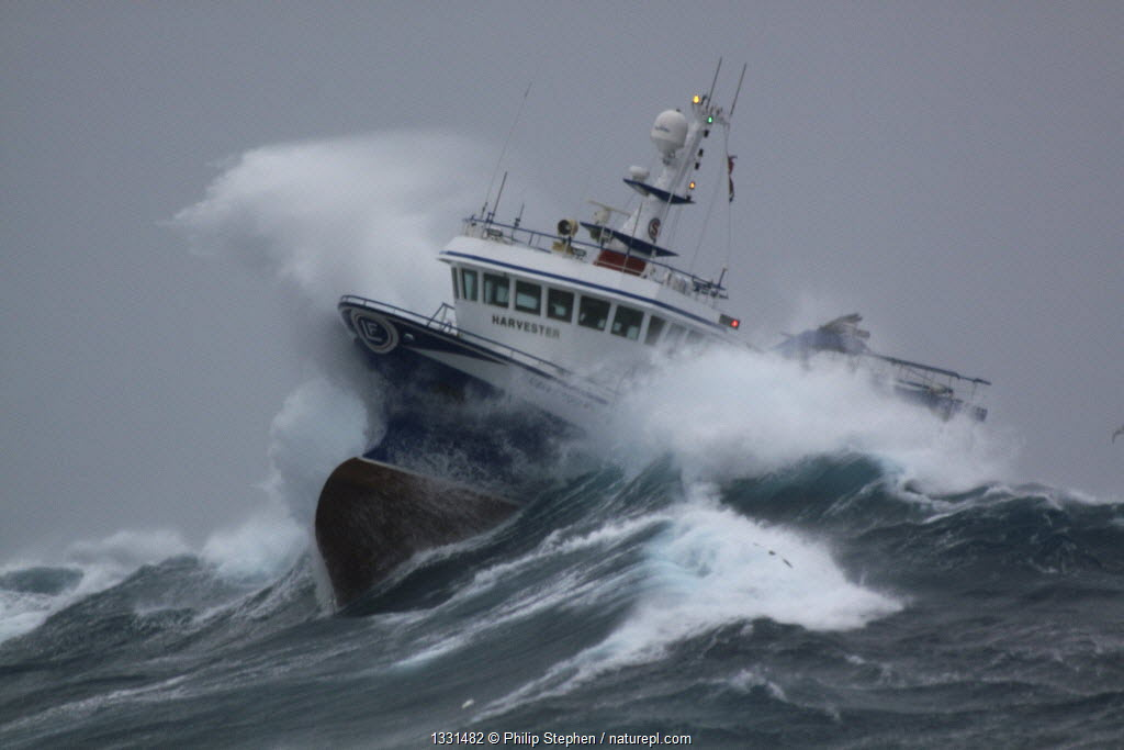 Fishing vessel 'Harvester' powering through huge waves while operating in the North Sea. Europe, January 2009. Property released.