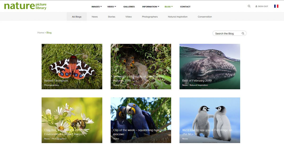 Naturepl.com's new blog homepage