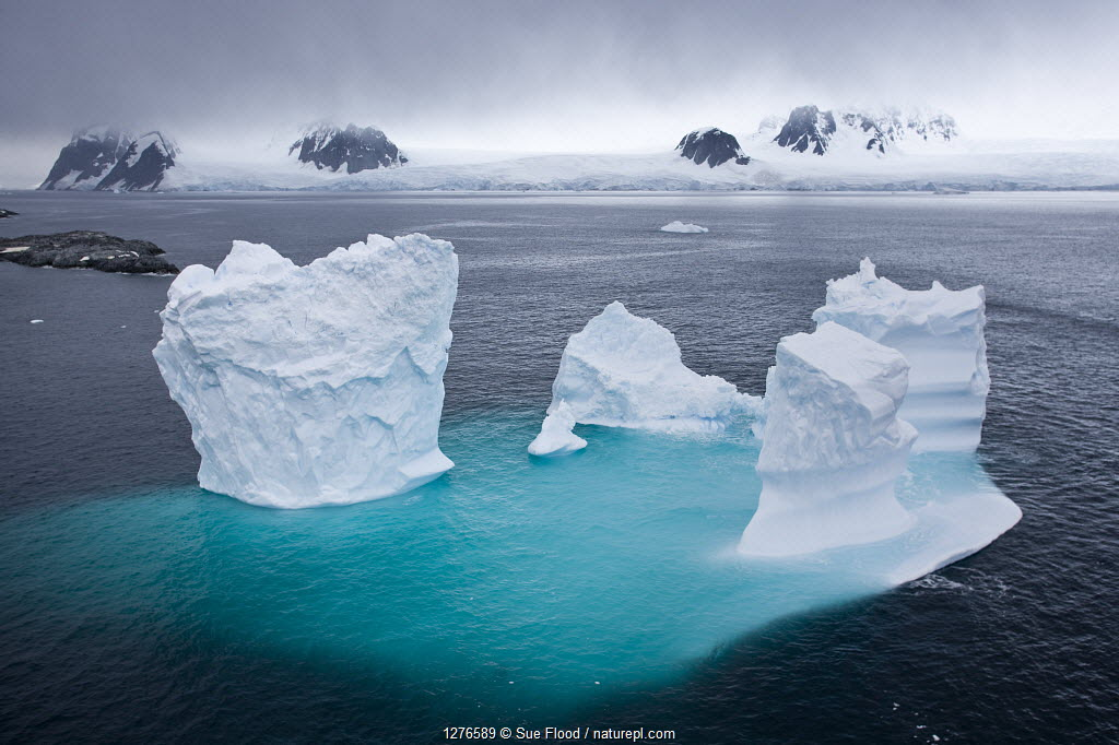 Aerial view of iceberg, with majority of berg visible under the water, Antarctic peninsula