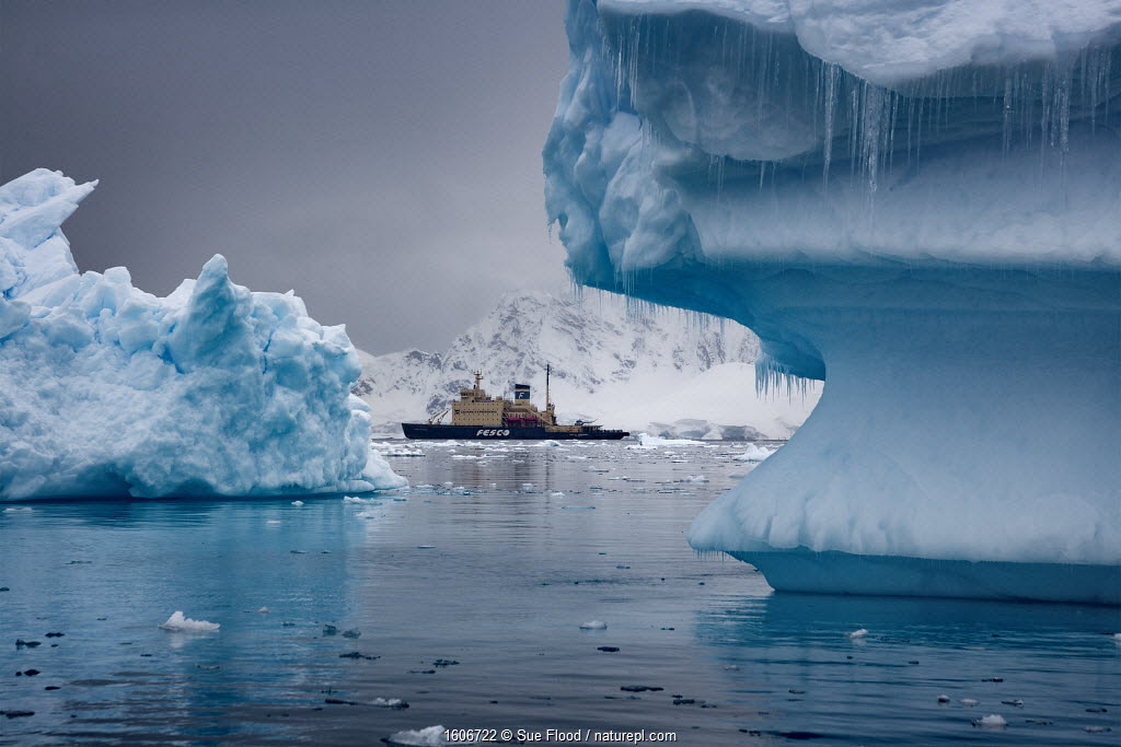 Russian icebreaker Kapitan Khlebnikov in the Weddell Sea, Antarctica