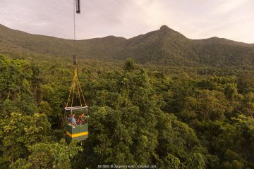 Scientists studying response to wet-dry seasonal transition in rainforest trees, in basket lifted by crane. Daintree rainforest observatory, Queensland, Australia. February 2015.