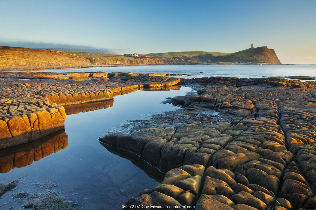 Rock formations at Kimmeridge Bay, Clavell Tower in background, Isle of Purbeck, Jurassic Coast, Dorset, England, UK. December 2010.