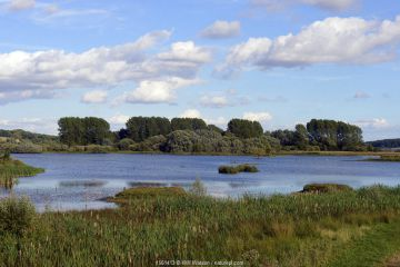 View of Rutland Water Nature Reserve, RAMSAR site, Special Protection Area and Site of Special Scientific Interest, August 2016, Egleton, Rutland, England.