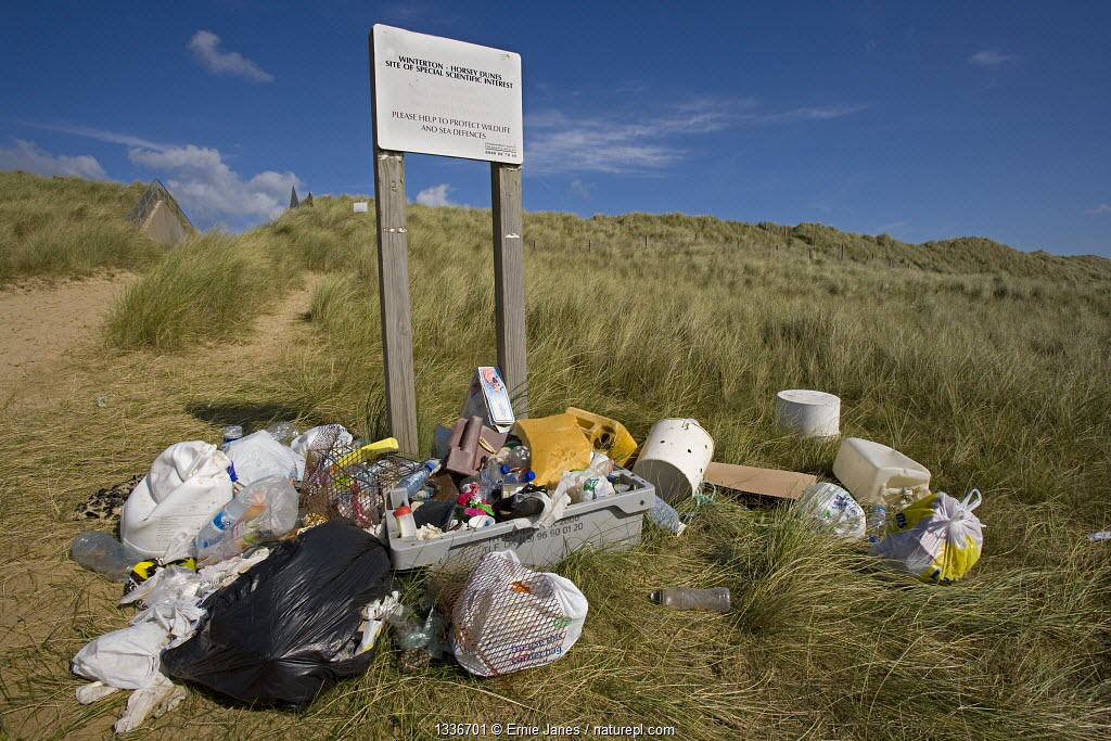 Rubbish collected from Winterton Beach, Norfolk, UK, September.