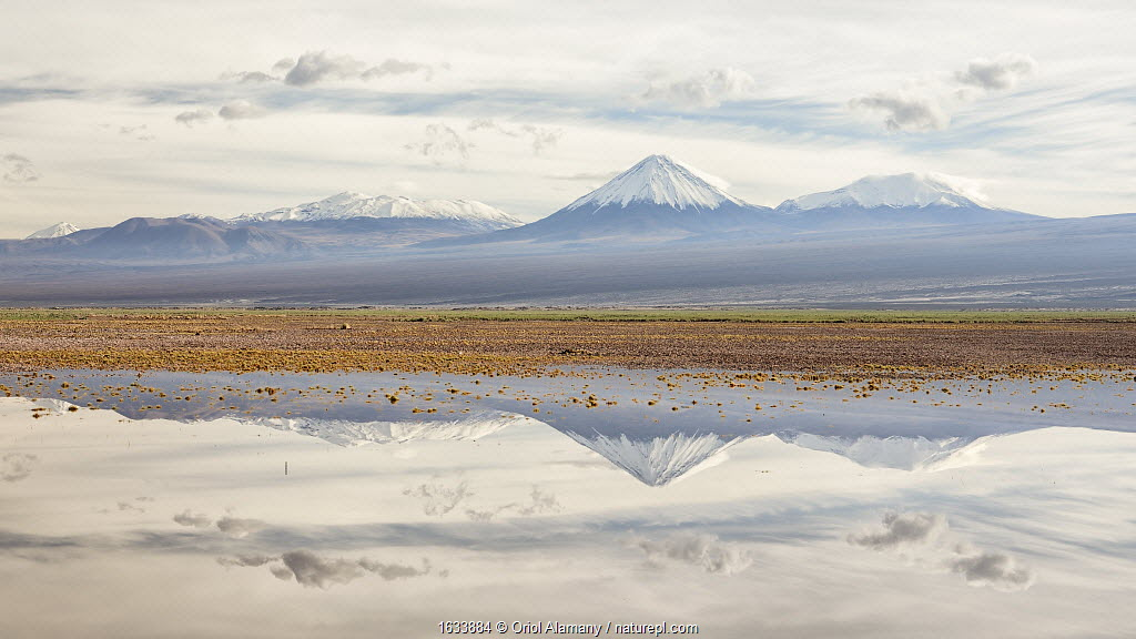 Licancabur volcano and surrounding mountains reflected in waters of a severe flood caused by climate change. Los Flamencos National Reserve, Antofagasta , Chile. February 2019