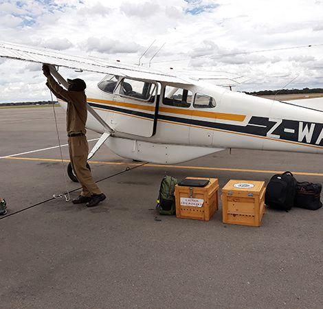 Landed at Victoria Falls