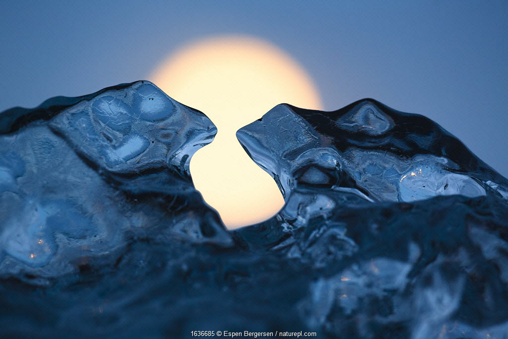 Ice sculpture formed like toads. Full moon in background. Iceland, May.