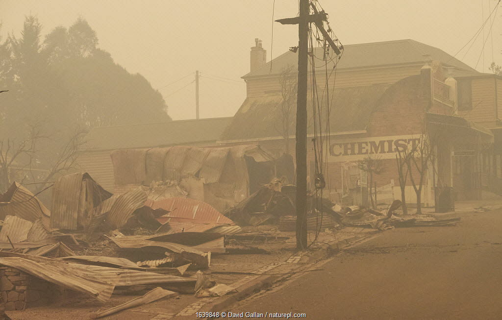 The remains of the main street after a bushfire in Cobargo, NSW, Australia. Two people perished on New Years Eve 2019, and one later died in hospital. January 2020.