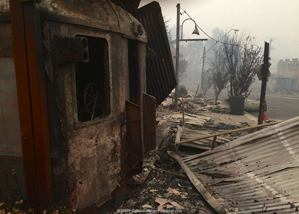 A gutted train cafe in the main street of Cobargo, New South Wales, Australia. Damage caused by December 2019 bushfires.