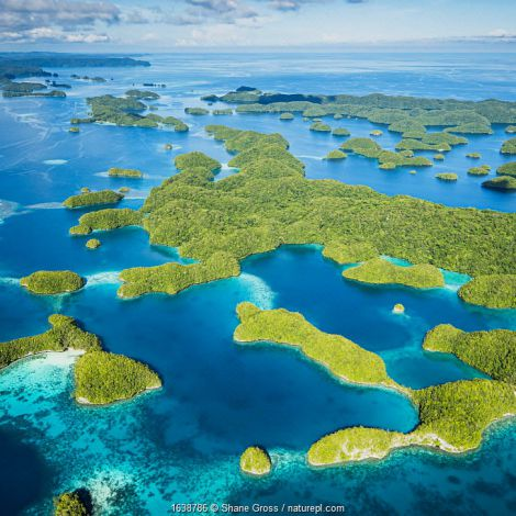 Aerial view of the rock islands, Palau.