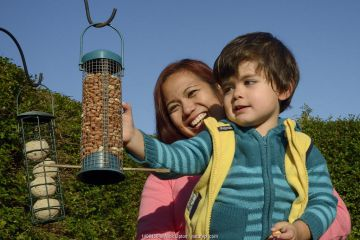 Young boy held up by his mother inspecting garden bird feeder filled with peanuts that he has just hung up, Bristol, UK, October 2014. Model released.