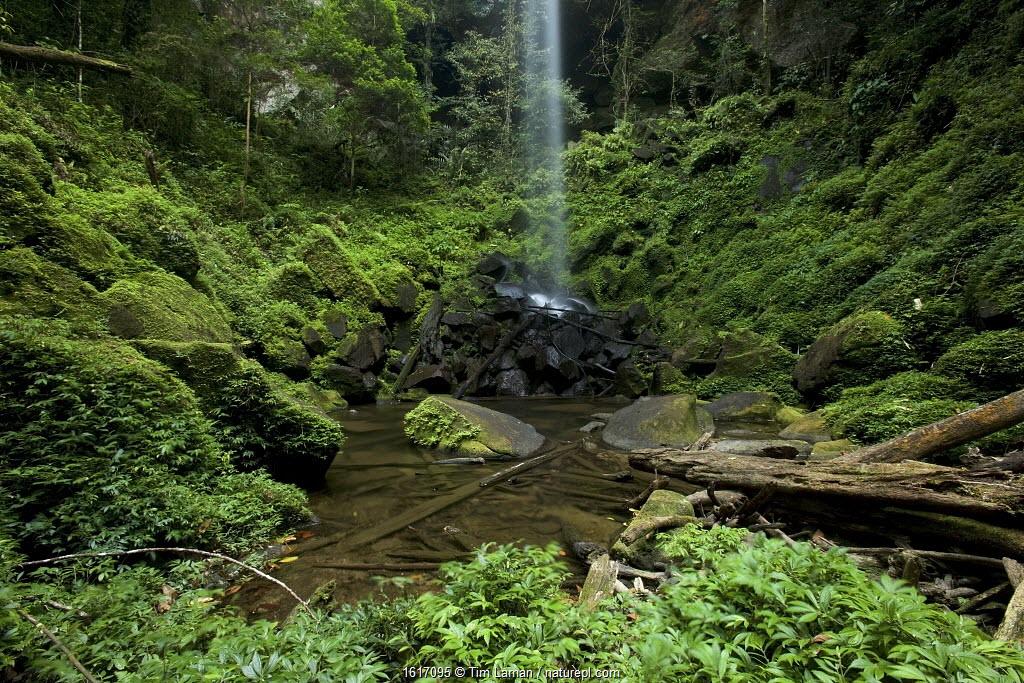 Waterfall in Sumatran rainforest, Batang Toru Forest, Sumatran Orangutan Conservation Project, Northern Sumatran Province, Indonesia.