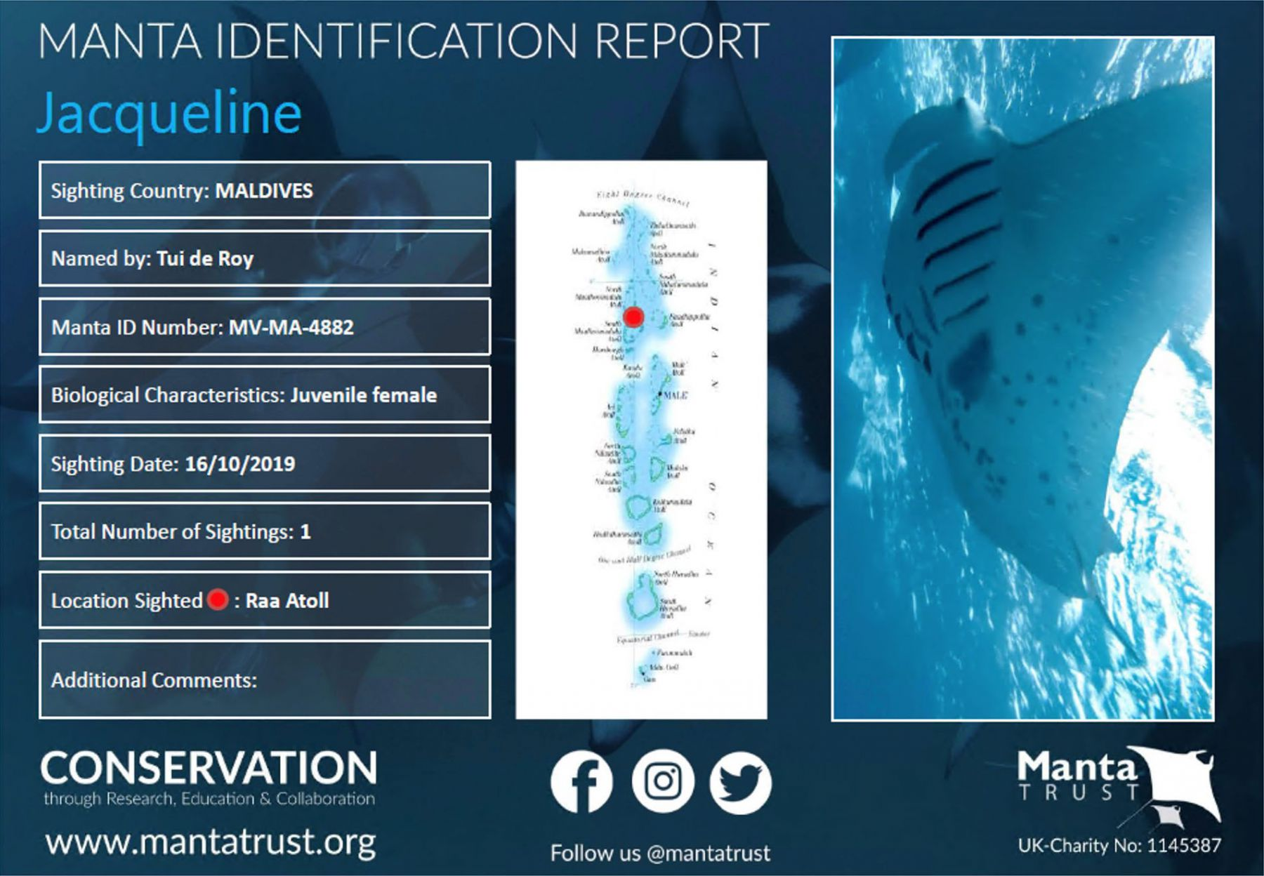 Manta Ray Identification Report - Jacqueline