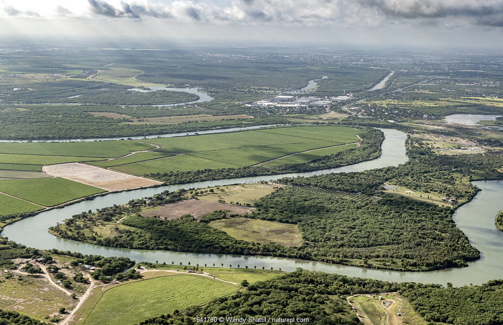 Meanders of the Rio Grande with view towards Tamaulipas, Mexico from Bensen-Rio Grande State Park, aerial view. Illustrates challenge of building a border wall alongside the river. Mission, Texas, USA. July 2019.