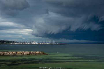 Storm clouds above Sandringham yacht club (in Port Philip Bay). Sandringham, Victoria, Australia. May 2020.