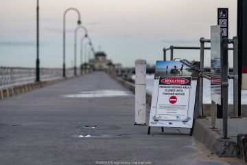 Signs explaining that the St Kilda Penguin colony is closed for viewing until further notice due to the Coronavirus (COVID-19) pandemic. St Kilda pier, St Kilda, Victoria, Australia. April 2020