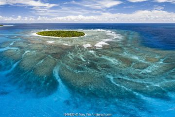 Aerial panorama of Fangasito Island with the underwater coral reef clearly visible, Vava'u island group, Kingdom of Tonga, South Pacific, with Fonua'one'one island visible in the background. September 2019.