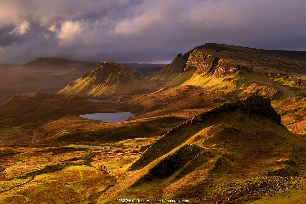 The Quiraing in golden morning light, eastern face of Meall na Suiramach, the northernmost summit of the Trotternish on the Isle of Skye, Scotland, UK. November.