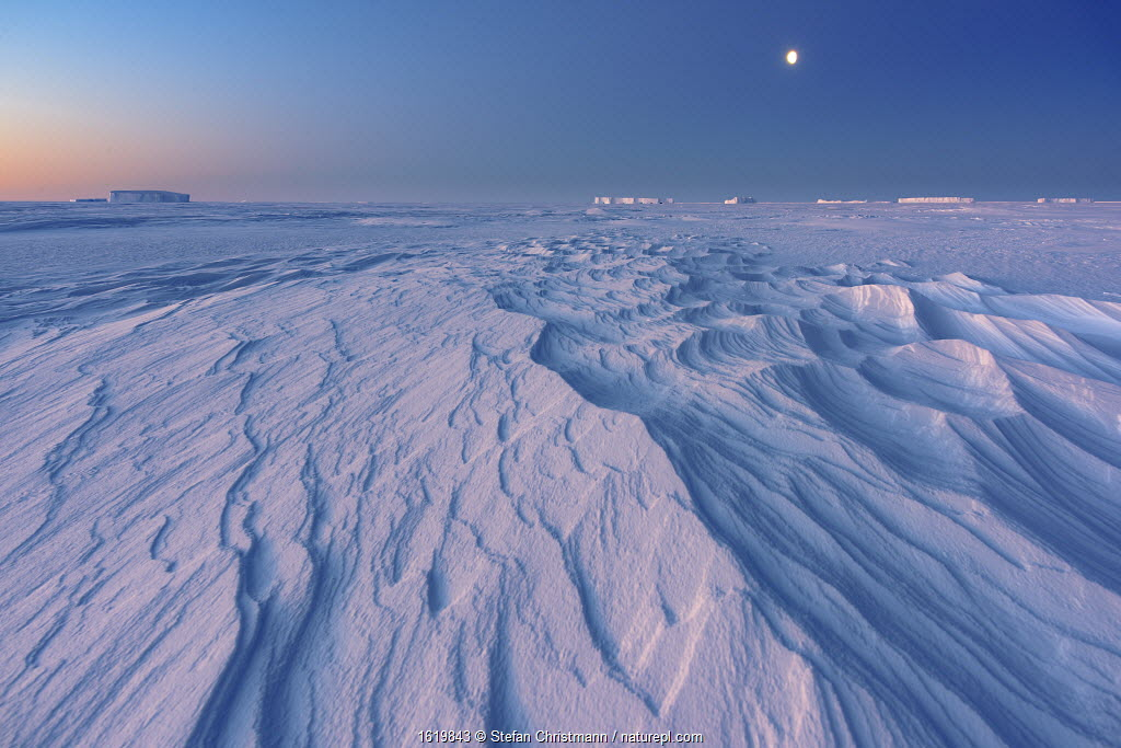 Formations in sea ice at full moon, during polar night. Atka Bay, Antarctica. July 2017.