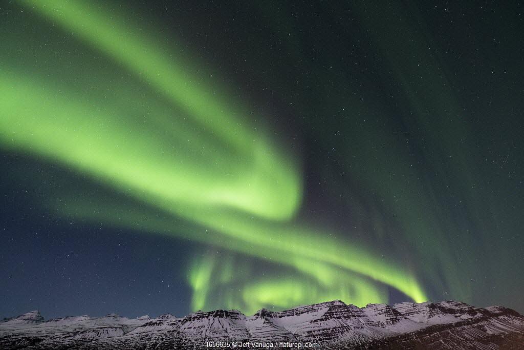 Northern lights/ Aurora borealis near Breladalsvik in eastern Iceland. August 2018.