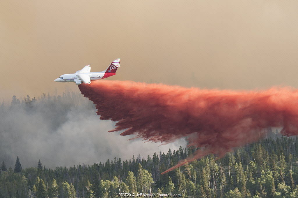 Fire fighting activities with fixed wind aircraft dropping fire retardant on the Lava Mountain Fire, Wyoming, USA. July 2016