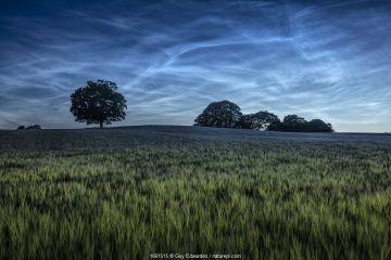 Landscape of farmland at night, Dorchester, Dorset, England, UK. June 2020.