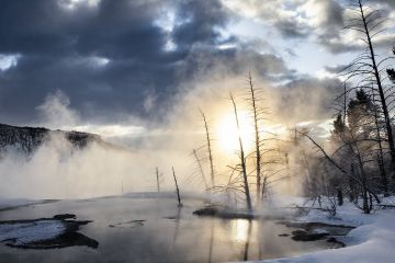 Canary Springs in the upper terrace of Mammoth Hot Springs in Yellowstone National Park, Wyoming, USA, January.