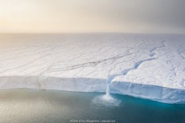 Melting ice sheet with massive waterfalls running off the Austfonna glacier, the third largest glacier in the world covering most of Nordaustlandet island, eastern Svalbard, Norway. Winner of Truet Nordisk Natur category of Natur & Foto competition 2020.