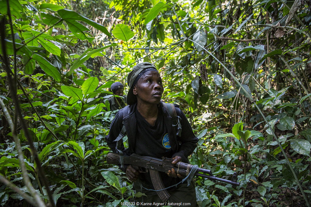 Portrait of female ecoguard / ranger Salonga National Park, Democratic Republic of Congo. May 2017. There are 16 women who work as Ecoguards protecting the 8.9 million acres of Salonga National Park.