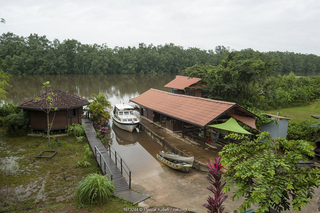 Buildings of the Rour'Attitude ecolodge on Oyak River. Roura, French Guiana. 2015.