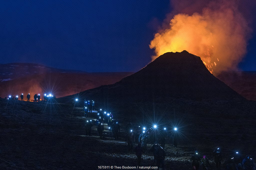 Long line of walking people with headlights, heading back at night from visiting Fagradalsfjall volcano on Iceland, photographed around half an hour after sunset. The eruption draws large numbers of visitors, mostly domestic tourists due to coronavirus pandemic. 2 April 2021.