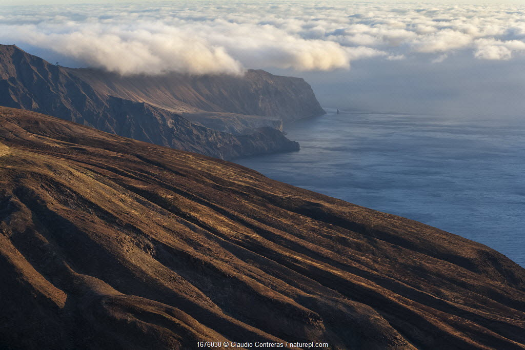 View to the northern part of the island, Guadalupe Island Biosphere Reserve, off the coast of Baja California, Mexico, April