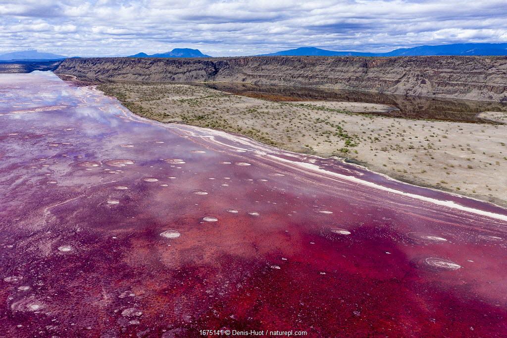 Aerial view of Red soda in Lake Magadi, Rift Valley, Kenya. October 2019.