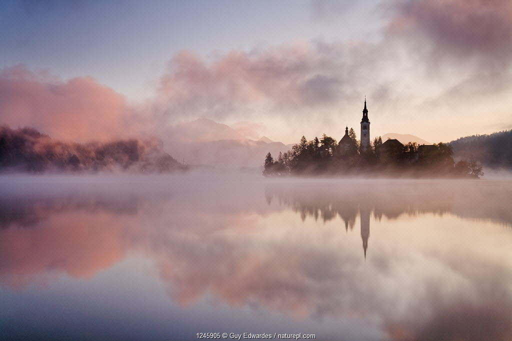 Lake Bled at sunrise with Bled Island and the Assumption of Mary's Pilgrimage Church, Bled, Gorenjska, Slovenia, October 2007