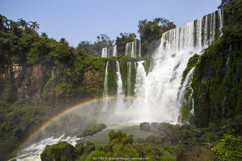 Iguazu waterfall on the border of Brazil, with rainbow, Iguazu National Park, Argentina