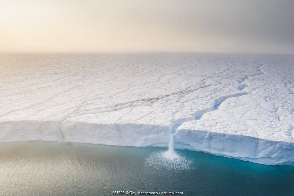 Melting ice sheet with massive waterfalls running off the Austfonna glacier, the third largest glacier in the world covering most of Nordaustlandet island, eastern Svalbard, Norway.